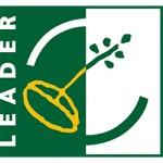 LEADER WEB